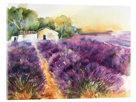 Acrylic glass  Lavender field in Provence - Eckard Funck