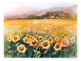 Premium poster  Sunflower field in the Luberon, Provence - Eckard Funck