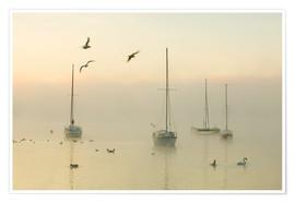 Premium poster  A misty morning over Lake Windermere Lake District
