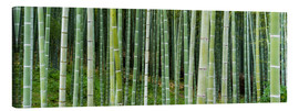 Canvas  Green bamboo forest in Kyoto, Japan - Jan Christopher Becke