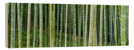 Wood  Green bamboo forest in Kyoto, Japan - Jan Christopher Becke