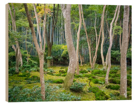 Wood print  Gio-ji Temple in Arashiyama, Japan - Jan Christopher Becke