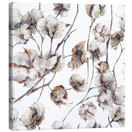 Canvas print  Cotton Blossom