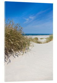 Acrylic print  Dunes and the Sea