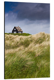 Cottage in the dunes during storm