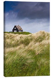 Canvas print  Cottage in the dunes during storm