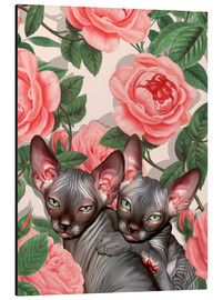 Aluminium print  Sphynx kitten with roses - Mandy Reinmuth