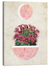 Canvas print  sunshine cactus - Mandy Reinmuth