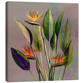 Canvas print  Flamingo flower - strelitzia - Mandy Reinmuth