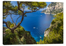 Canvas print  Wonderful sea view in Capri (Italy) - Christian Müringer