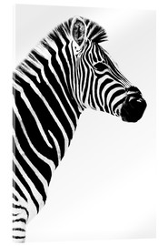 Acrylic print  Safari Profile Collection - Zebra White Edition III - Philippe HUGONNARD