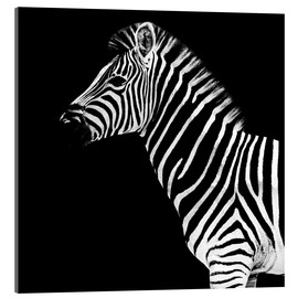 Acrylic print  Safari Profile Collection - Zebra Black Edition II - Philippe HUGONNARD