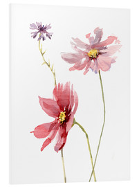 Foam board print  Cosmos flower and cornflower - Verbrugge Watercolor