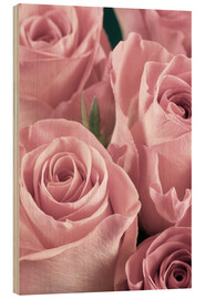 Wood  Bunch of roses in pale pink