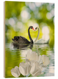 Wood  Two swans in love