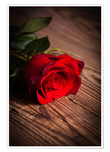Red Rose On Wood Posters And Prints Posterlounge Com