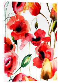 Acrylic print  Poppy and Tulips flowers