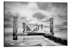 Aluminium print  Groynes on the Baltic Sea coast in Zingst, Germany - Rico Ködder