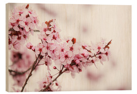 Wood  Cherry blossoms