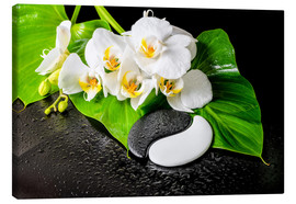 Canvas print  White orchids and Yin-Yang stones
