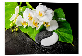 Foam board print  White orchids and Yin-Yang stones