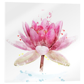 Acrylic print  Pink Waterlily Flower