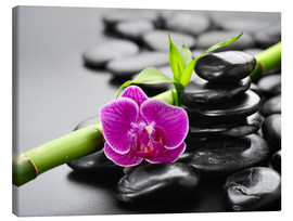 Canvas print  Basalt stones, bamboo and orchid
