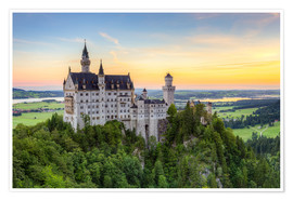 Premium poster Neuschwanstein Castle at sunrise in summer