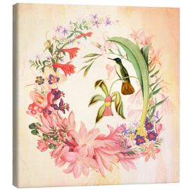 Canvas print  Hummingbird I - Mandy Reinmuth