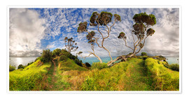 Premium poster  Russell - New Zealand - Bay of Island - Michael Rucker