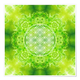 Premium poster  Flower of Life - Healing Power of Nature - Dolphins DreamDesign