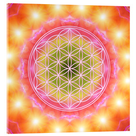 Acrylic print  Flower of life - heart energy - Dolphins DreamDesign