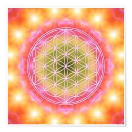 Premium poster  Flower of life - heart energy - Dolphins DreamDesign