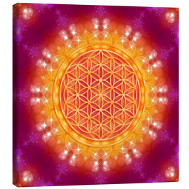 Canvas print  Flower of Life - Abundance - Dolphins DreamDesign