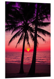 Foam board print  Palm trees and tropical sunset