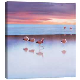 Canvas print  Andean Flamingos, Bolivia
