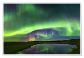 Premium poster  Northern Lights - Dave Derbis