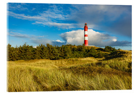 Acrylic print  Lighthouse on the North Sea island Amrum - Rico Ködder