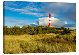 Canvas print  Lighthouse on the North Sea island Amrum - Rico Ködder