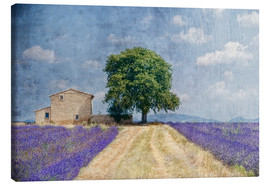 Canvas print  Provence picturesque - Joachim G. Pinkawa