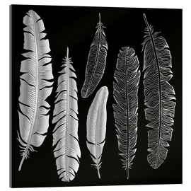 Acrylic glass  Feathers in silver