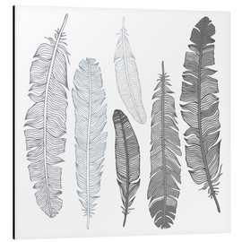 Feathers on white