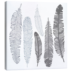 Canvas  Feathers on white