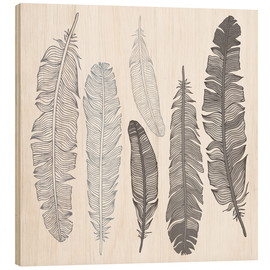 Wood print  Feathers on white