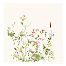 Poster  Wild Flower Meadow - Dearpumpernickel