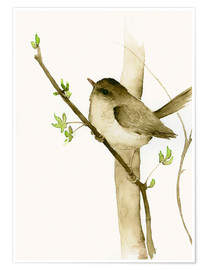 Poster  Little Songbird - Dearpumpernickel