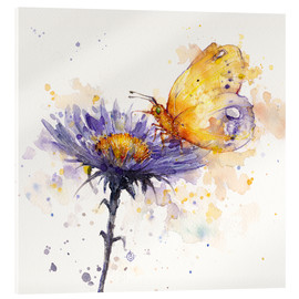Acrylic print  Flowers & flutters (butterfly & flower) - Sillier Than Sally
