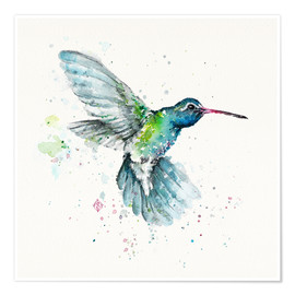 Poster  Hummingbird Flurry - Sillier Than Sally