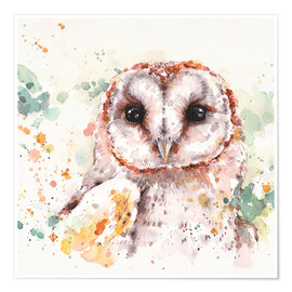 Premium poster  Barn Owl - Sillier Than Sally