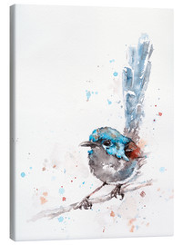Canvas print  Mischief In The Making (Fairy Wren) - Sillier Than Sally